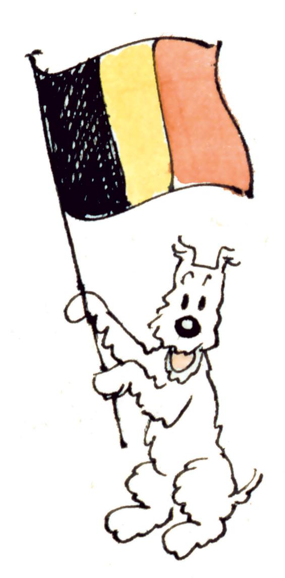 Plus belle la vie en belgique resume